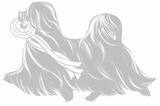 Hundefriseur Beauty Champion